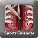 TP-sportscalendar.jpg